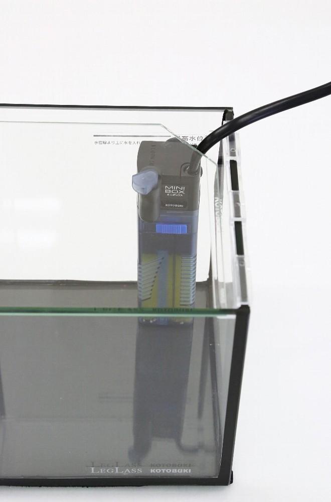 7X1A7310